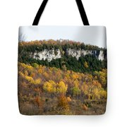Old Baldy In Fall Tote Bag