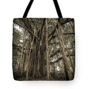 Old Banyan Tree Tote Bag