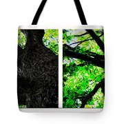 Old Barks Diptych - Deciduous Trees Tote Bag