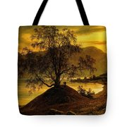 Old Birch Tree At The Sognefjord Tote Bag