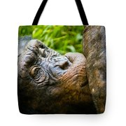 Old Chimp Tote Bag