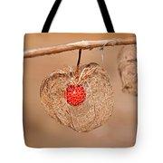 Old Chinese Lantern Pod Art Prints Tote Bag