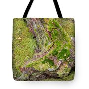 Old Decaying Lichens Moss Covered Taiga Tree Trunk Tote Bag