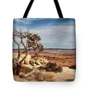 Old Desert Cypress Struggles To Survive Tote Bag