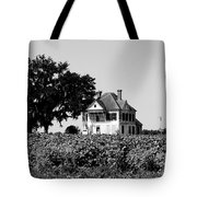 Old Farmhouse Surrounded By Cotton Tote Bag