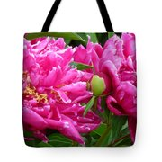 Old Fashion Beauties Tote Bag