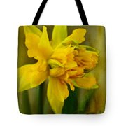 Old Fashioned Daffodil Tote Bag