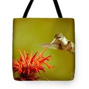 Old Fashioned Hummingbird Tote Bag