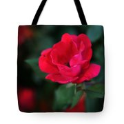 Old Fashioned Rose Tote Bag