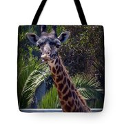 Old Funny Face Tote Bag