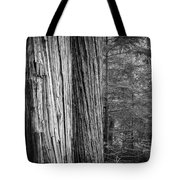 Old Growth Cedars Glacier National Park Bw Tote Bag