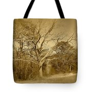 Old Haunted Tree In Sepia Tote Bag