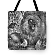 Old King In Black And White Tote Bag