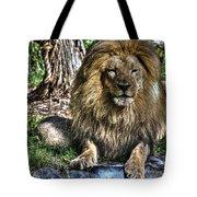 Old King Lion Tote Bag