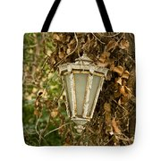 Old Lamp Hanging On Tree  Tote Bag