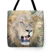 A  Lion Talks Tote Bag