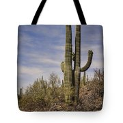 Old Married Couple Tote Bag