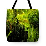 Old Mossy Stump Tote Bag