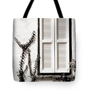 Old Painted Shutter 2 Tote Bag