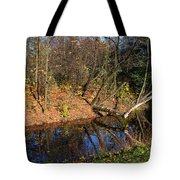 Old Park Canal In Autumn Tote Bag