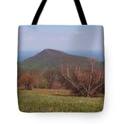 Old Rag Mountain Tote Bag