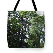Old Section Mt Hope Cemetery Tote Bag