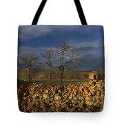 Old Shepherd's Hut Tote Bag