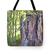 Old Stump Tote Bag