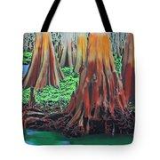 Old Swampy Tote Bag