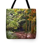 Old Swimming Hole Tote Bag