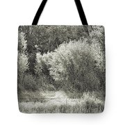 Old Time Autumn Tote Bag