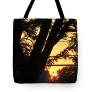 Old Tree And Sunset Tote Bag