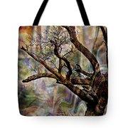 Old Tree Photoart Tote Bag