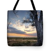 Old Tree Sunset Over Oyster Bay Tote Bag
