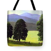 Old Wall Old Maples Tote Bag