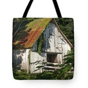 Old Whitewashed Barn In Tennessee Tote Bag by Debbie Karnes