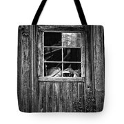 Old Window Tote Bag by Garry Gay