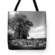 Old Woman Creek - Black And White Tote Bag