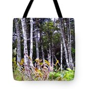 Old Wood Stand Painterly Style Tote Bag
