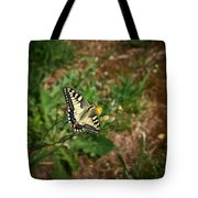 Old World Swallowtail. Montorfano. Cologne Tote Bag