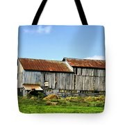 Olden Beauty Tote Bag