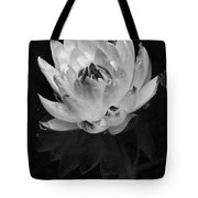 Older And Beautiful Bw Tote Bag