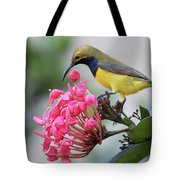 Olive-backed Sunbird Male With Flower Tote Bag