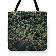 Olive Farmland In Spain Tote Bag