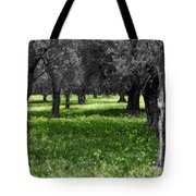 Olive Grove Italy Cbw Tote Bag