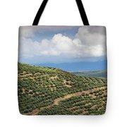 Olive Trees In A Field, Ubeda, Jaen Tote Bag