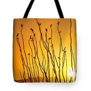 Oliver Lee Sunset Tote Bag