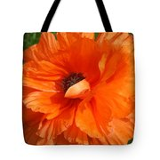 Olympia Orange Poppy Tote Bag