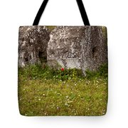 Olympia Ruins And Wild Flowers   #9821 Tote Bag