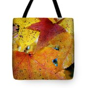 On A Nice Autumn Day Tote Bag